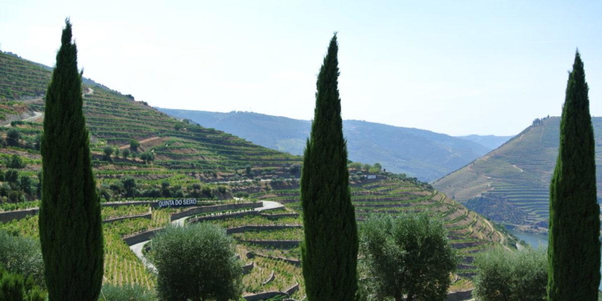Vallée du Douro mes photos 1